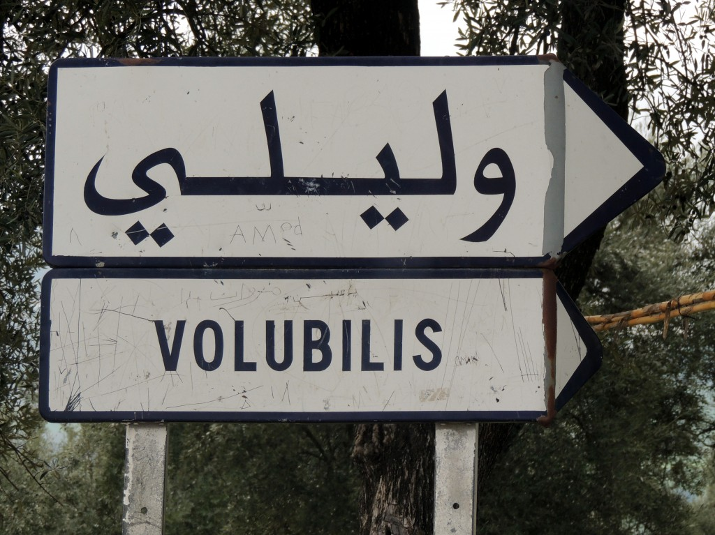 You have to make a right shortly after leaving Fez to get to Volubilis.